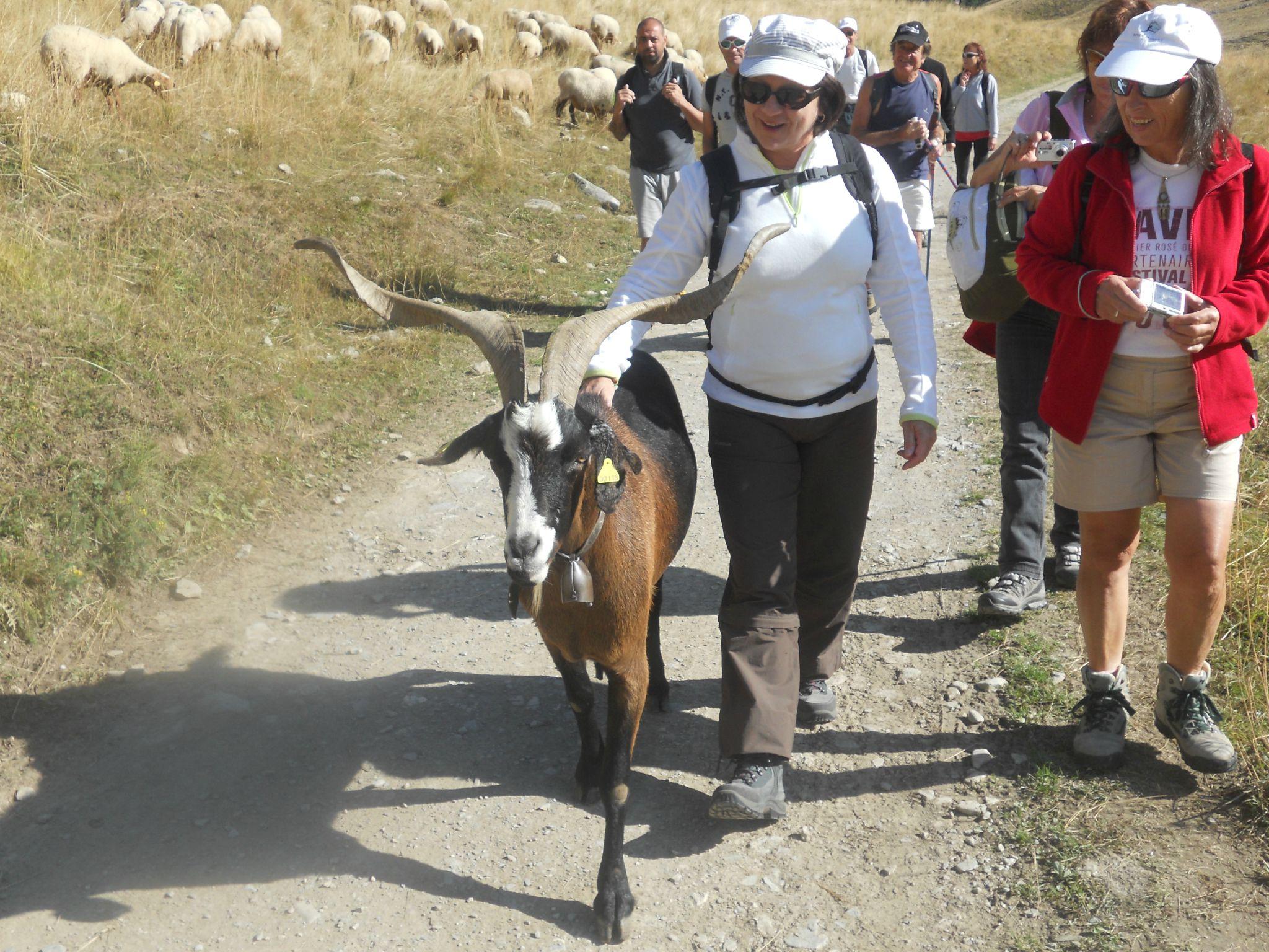 BARCELO 2012-09-09 (11)