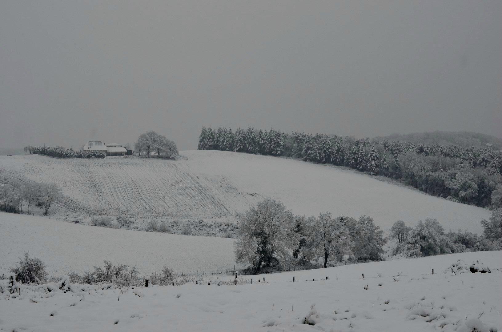 Vers la route de Sauveterre à Burgaronne...