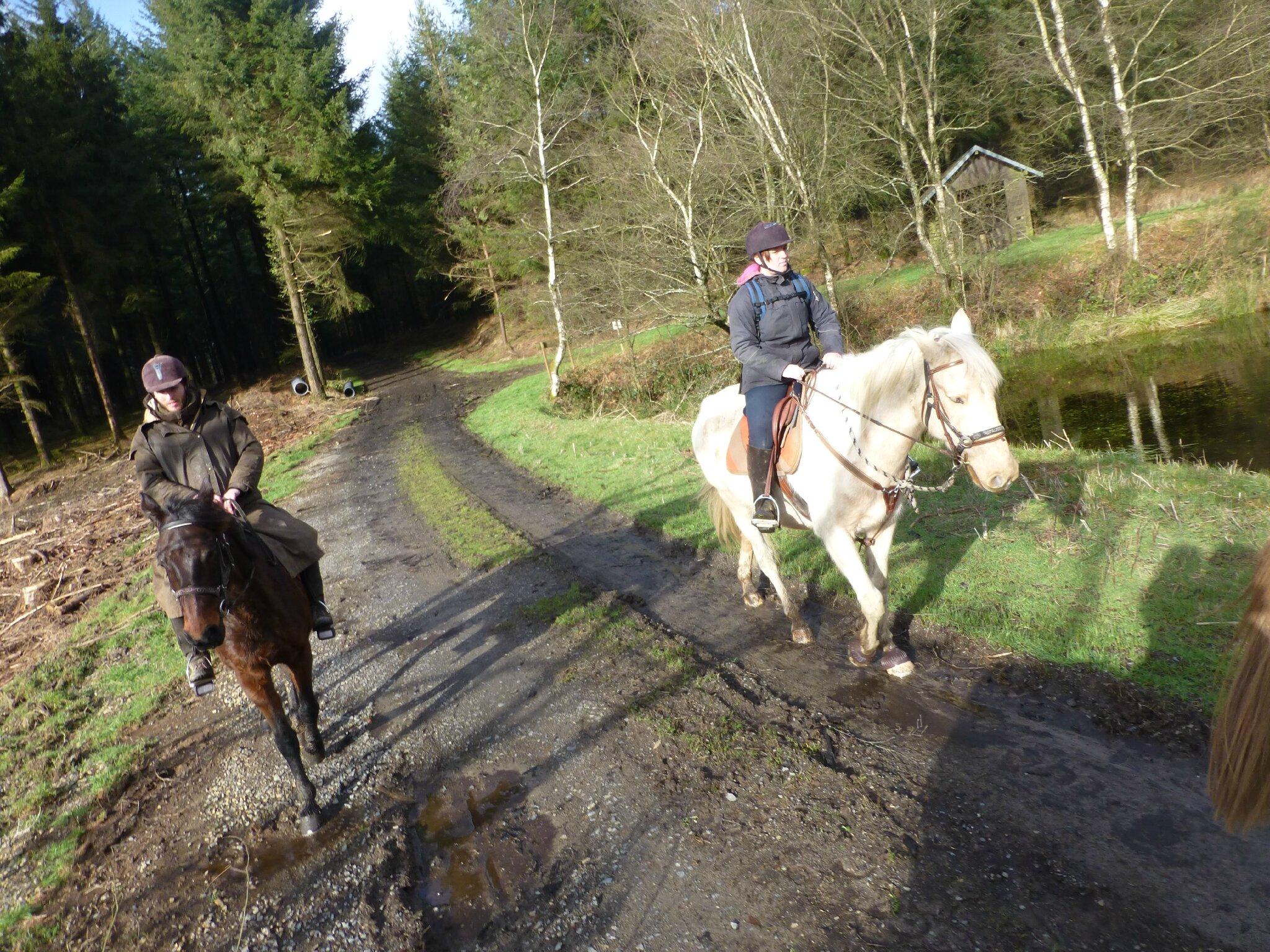 Balade à cheval dans la forêt P1080248