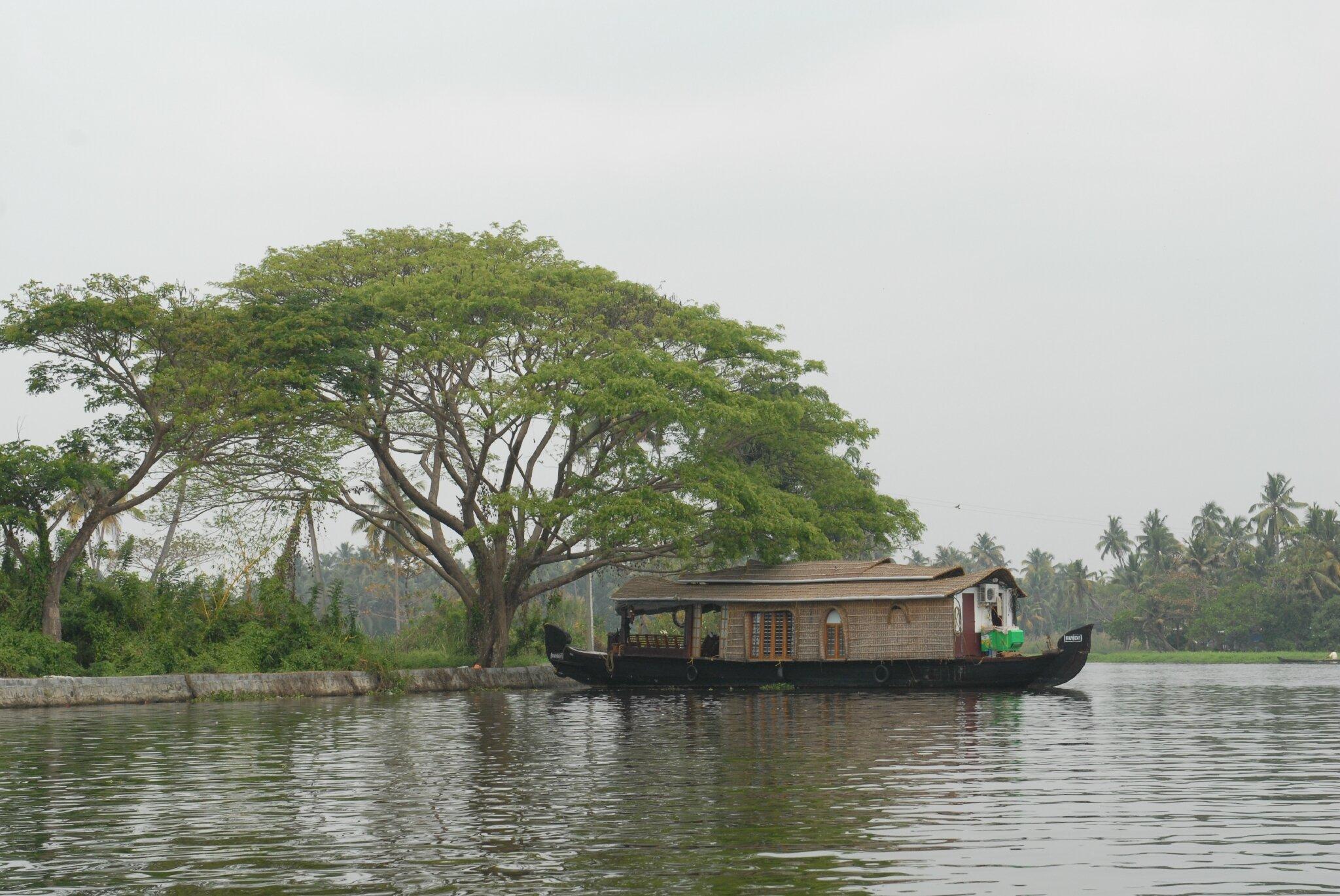 house boat sur les backwaters à Allepy