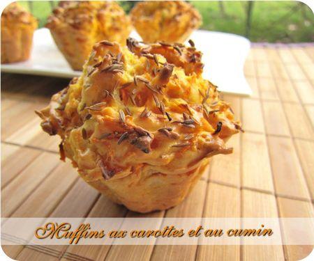 muffins carottes cumin (scrap2)