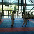 Arts martiaux 1