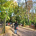 Entrée de l'exposition dans le bois