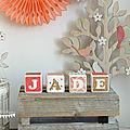 Décoration chambre d'enfant : cubes prénom décorés en bois