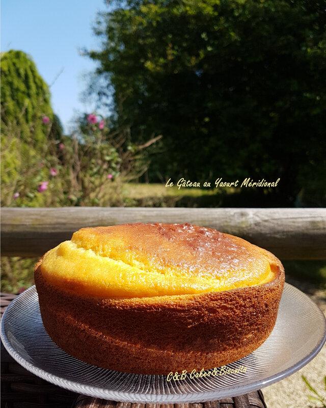 Gâteau Yaourt Méridional 1