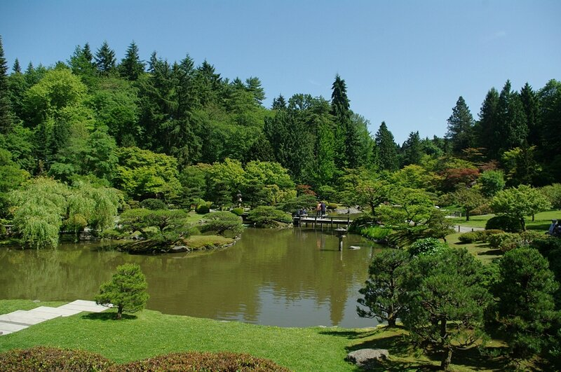 Japanese Garden Seattle 4