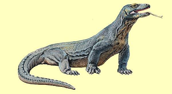 Le 13 octobre 1789 à Mamers : les dragons ne servent à rien.