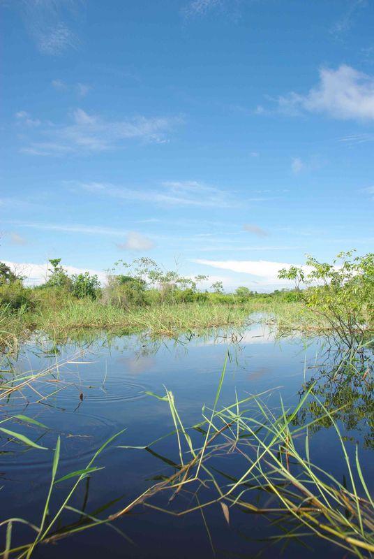Lagune de San Salvador
