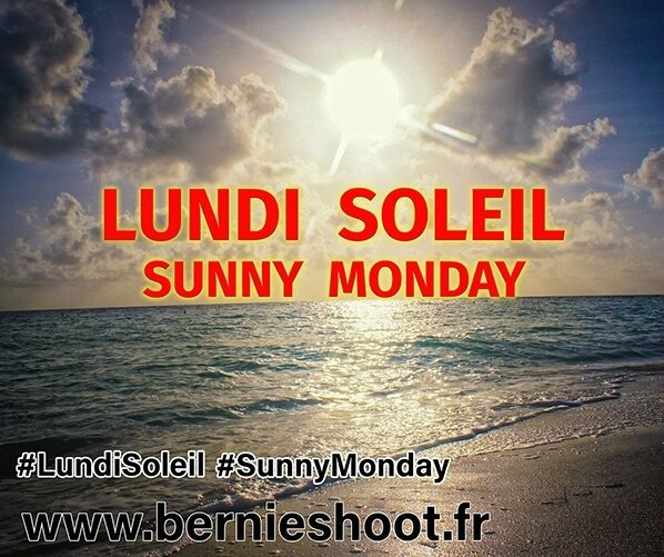 2017 lundi-soleil-sunny-monday-logo-officie