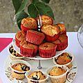 Petits muffins aux framboises