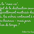 Citation 16...arbre
