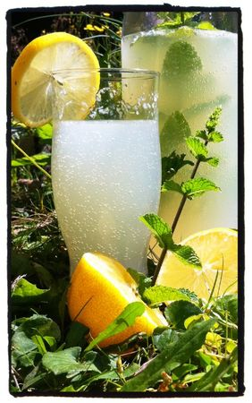 citronade à la menthe - lemon mint-2