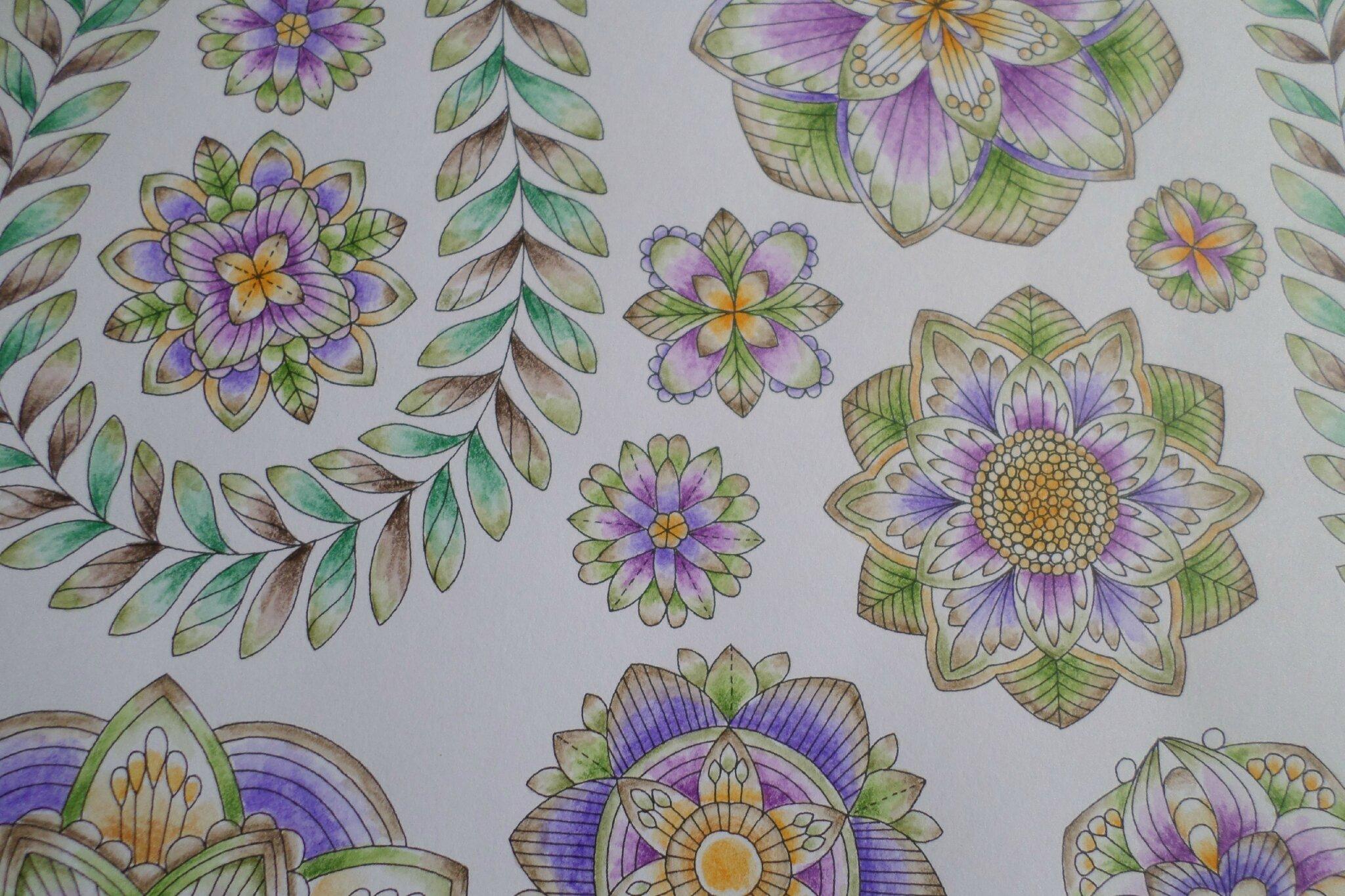 Coloriage Fleur Coucou.Coloriage Fleurs Steffy Elsass Crea