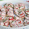 Toast de radis et fromage frais