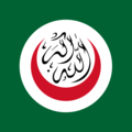 org%20of%20islamic%20conference%20flag
