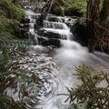 2009 04 20 Un petit ruisseau à côté du Lignon vers Mars en Ardèche en bordure de la Haute-Loire