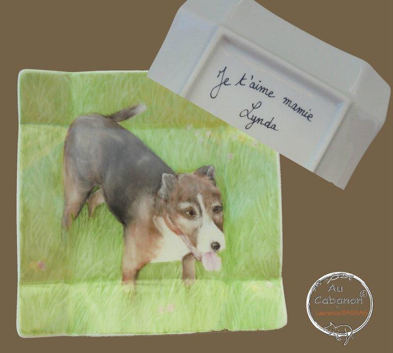 chien sandyDSC00534