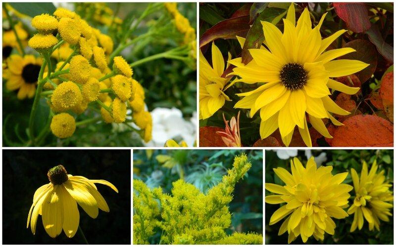 cinq jaune