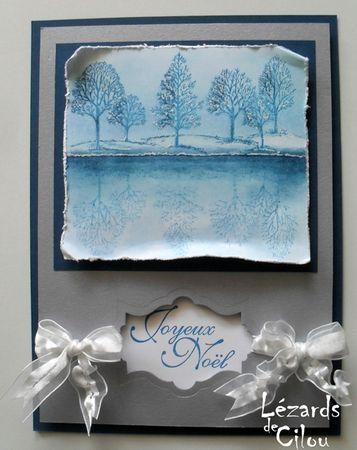 CARTE N°10 DECEMBRE 2012 BLOG