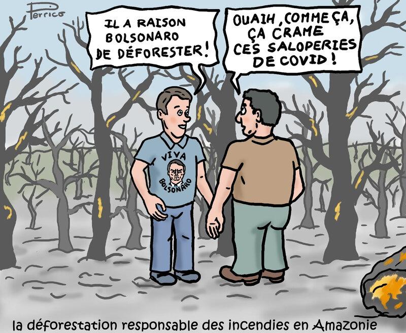 Bolsonaro et la déforestation - 17 août 2020