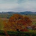 Notre belle vallée