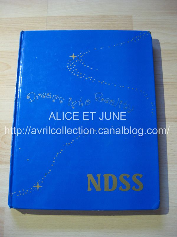 Yearbook Napanee District Seconday School-1999