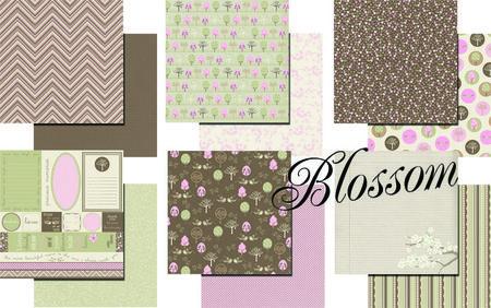 Blossom_compilation_CMYK_copy