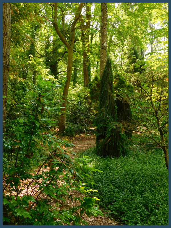 Arboretum des prés de Culand5