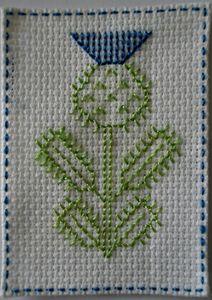 n° 591, chardon bleu (452x640)