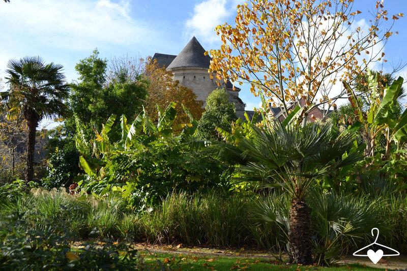 jardin-retraite-palmier-bananier-quimper-blog-alice-sandra