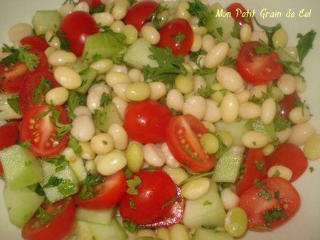 SaladeHaricotCoco2