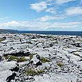 Irlande-12- the burren
