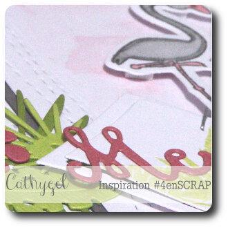 Cathygel