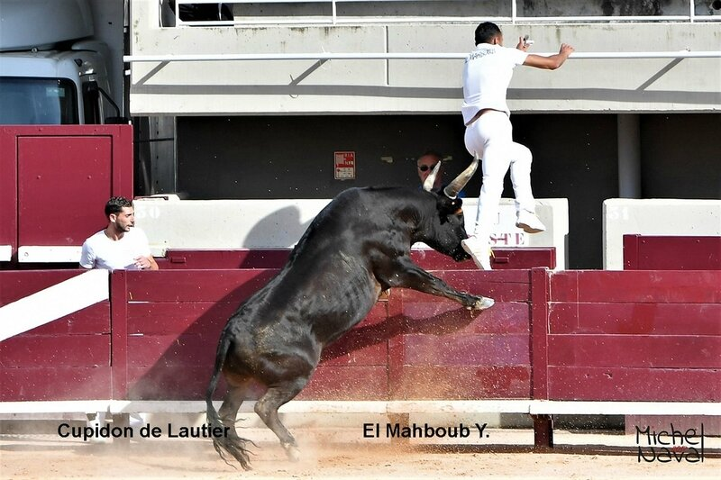 ISTRES 24