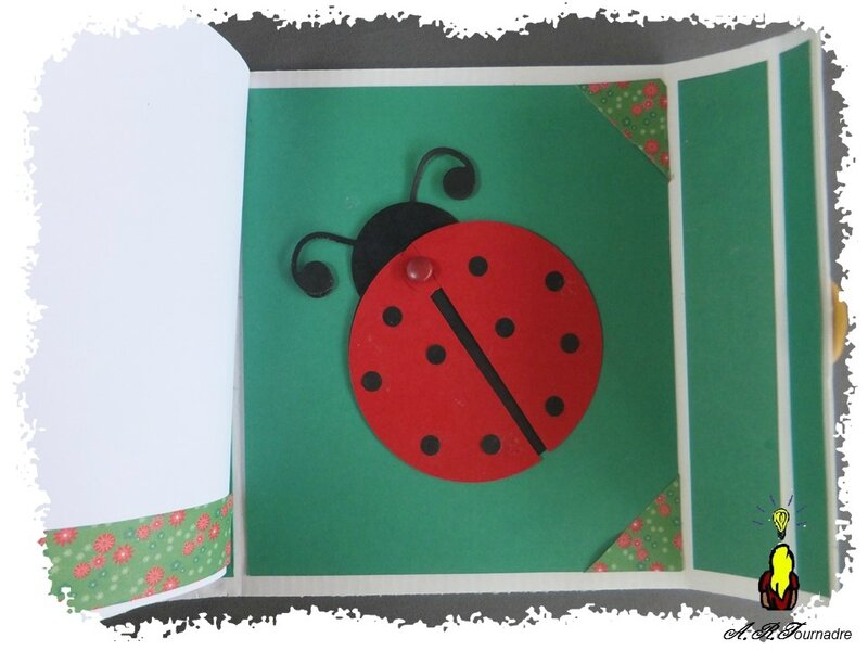 ART 2015 04 mini album coccinelle 12