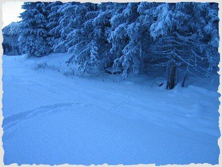 Une_promenade_dans_la_neige_10