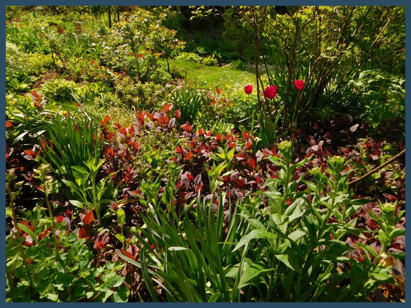 Jardin André Eve 26-045
