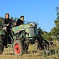 Photos JMP©Koufra12 - Cornus Rando Tracteurs - 15082018 - 187