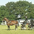 concours 2011 040