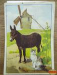muluBrok Cheque Tintin Perrault (7)