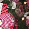 table picnic 043