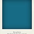 Déco Bleu pétrole - Chambre Garçon - Little Curiosité
