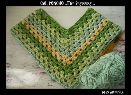 CAL Poncho -the beginning - Miss Butterfly