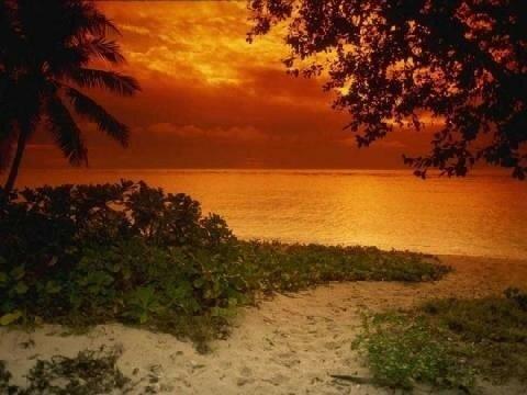Djerba coucher soleil