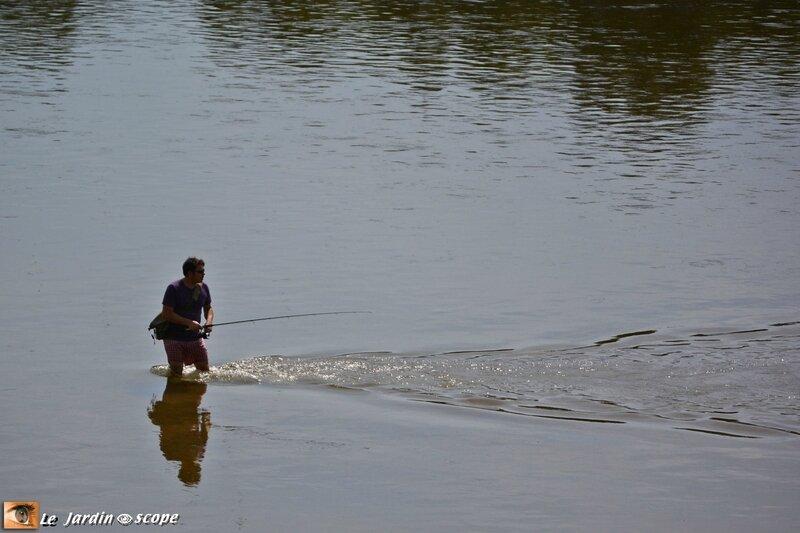 Pratique-de-la-pêche