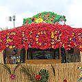 carnaval de landerneau 2014 086