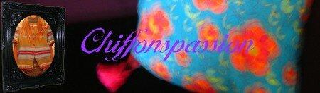 Chiffonspassion_copie