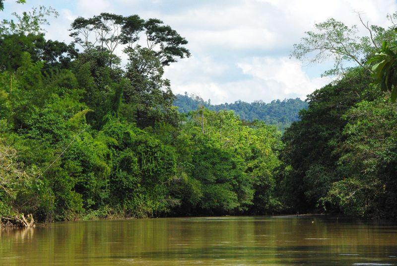 Le rio Magdalena