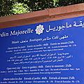 Souvenirs de marrakech #2