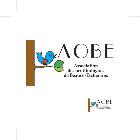 AOBE_logo_final_copie
